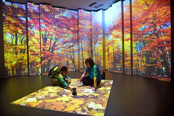 4D Sensory Studio - Autumn